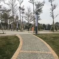 光明甲子塘精装《中央公园》首付9万