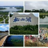 松山湖800米10栋大型花园小区《松湖花园》