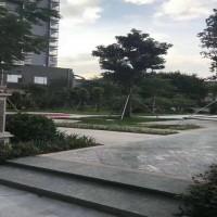 深圳大型村委花园小区《怡欣花园》